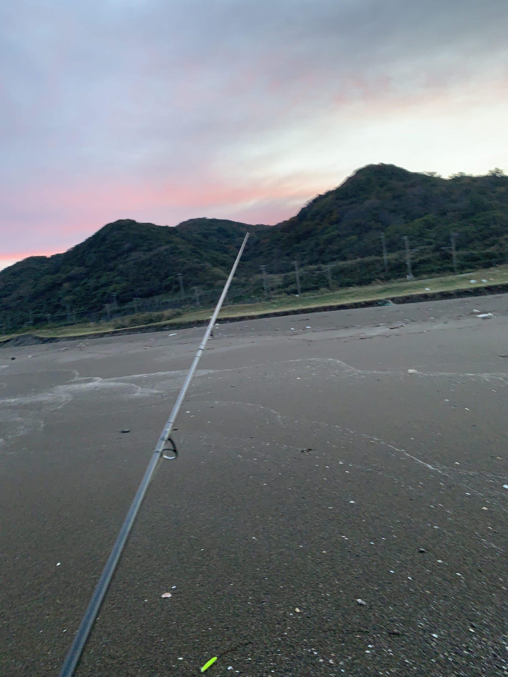 ここ数日の釣果のまとめ(柏崎〜上越サーフ)